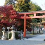 神道のお墓を建てるには。お墓の形や彫刻文字について