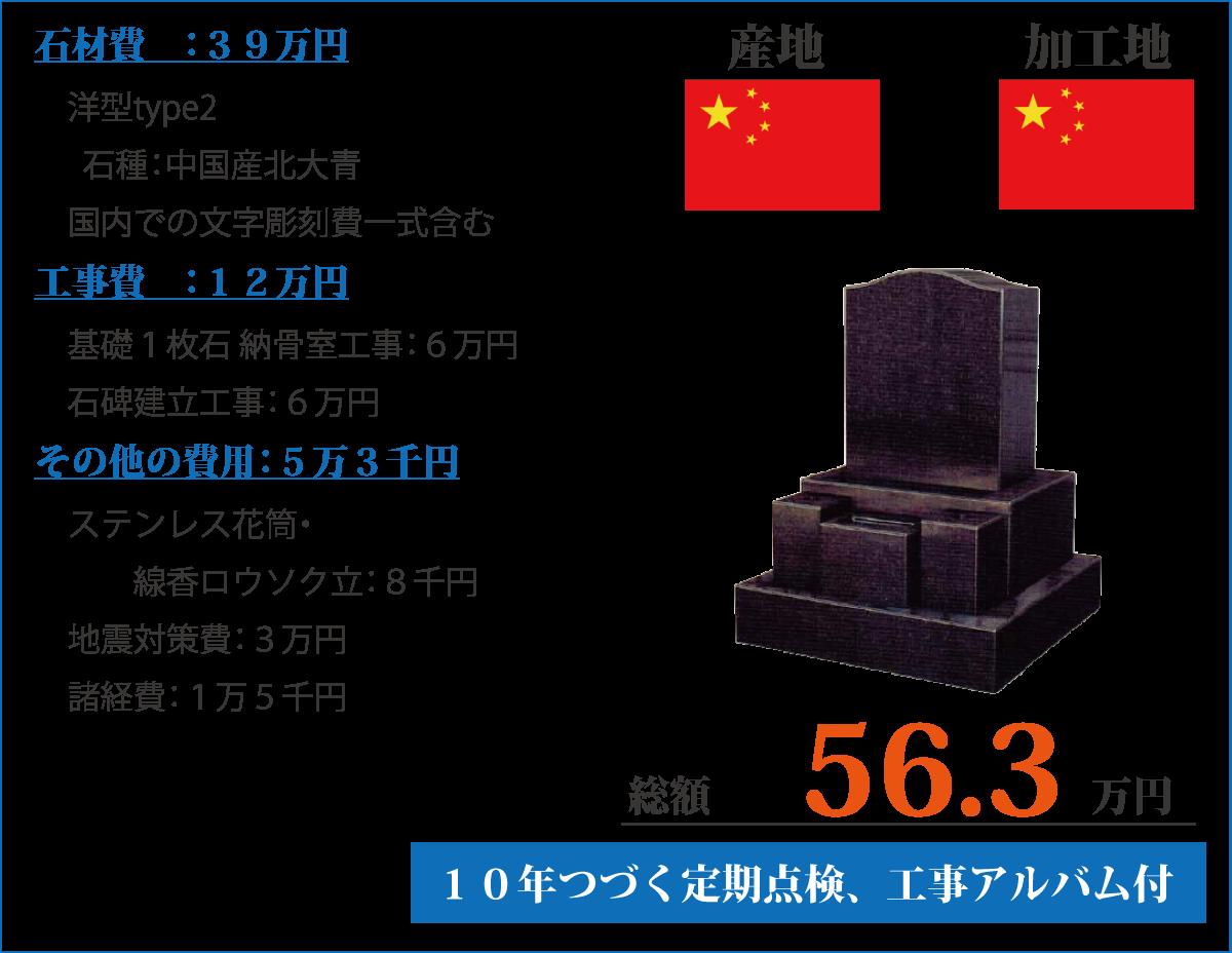 洋型Type2:中国産北大青
