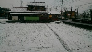 大垣では、雪が積もりました