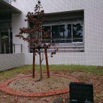 名古屋大学航空学科 75周年記念式典に出席しました